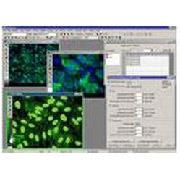 MetaXpress - Software di controllo e analisi per sistemi di high-content screening
