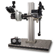 MOM - Movable Objective Microscope per microscopia a due fotoni