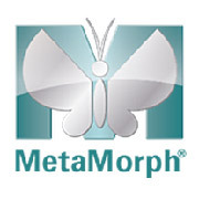Metamorph software for acquisition, control and analysis - Molecular Devices