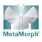 MetaMorph - Acquisizione, controllo e analisi