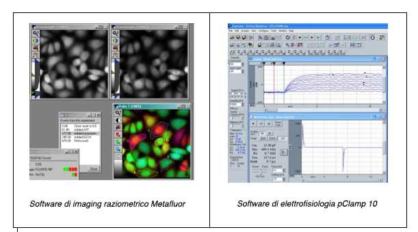 Sistemi-di-ion-imaging