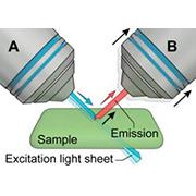Lightsheet microscopy