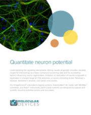 Quantitate neuron potential