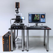 STEDYCON - confocal microscopy and 30 nm 2D super resolution STED – Abberior Instruments
