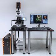 STEDYCON - microscopia confocale e 30 nm 2D super risoluzione STED - Abberior Instruments