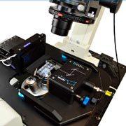 UPGRADE Light Sheet Imaging su microscopi esistenti